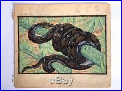 Serpent, dessin animalier, gouache aquarelle, argent / Jouve / Art Déco Snake
